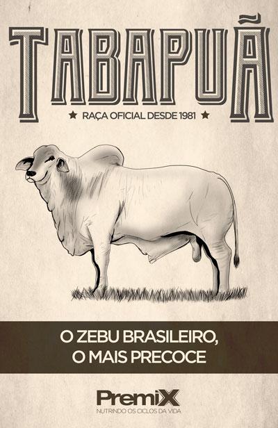 Tabapuã